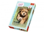 TREFL PUZZLE 100 - SWEET AND LOVE- -ZABAWA LATEM